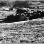Barinak,-1978