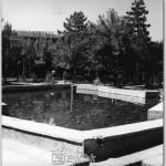 Bingol,-Park,-1978