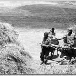 Kizakla-ot-tasima(3)